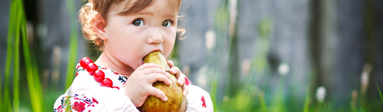 Bebeklerin Kendi Kendine Beslenmesi